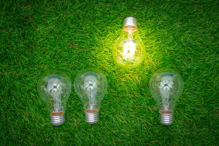 Green Business Ideas For Eco-Conscious Entrepreneurs